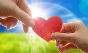 Как оформить благотворительность?