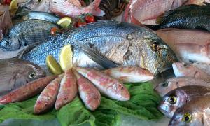 Как открыть магазин рыбы?