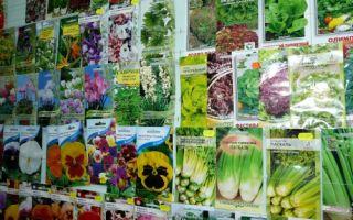 Как открыть магазин семян?