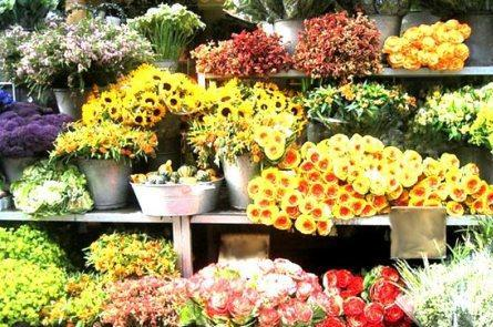 Цветы на продажу