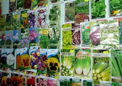Как открыть магазин семян